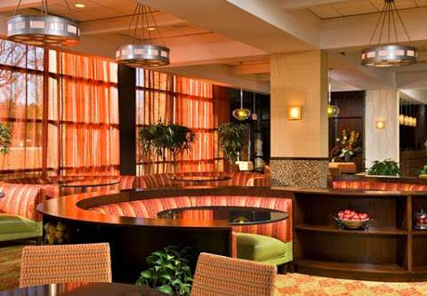 Jobs in Albany Marriott - reviews